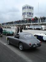 Highlight for album: Historic and Special Cars at International Healey Weekend, Goodwood 2008.